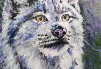 Bobcat Sighting…again!
